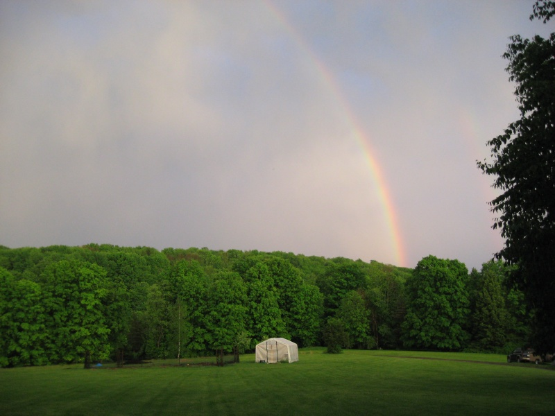double-rainbows-right-side